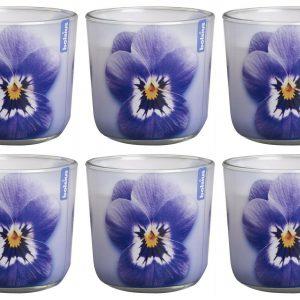 6 Stück Duftkerzen im Glas 76x78 mm Flower Burst Candle Blumen Duftgläser Wachs - Lila Violet