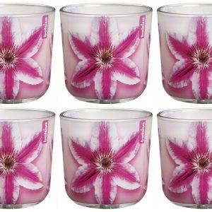 6 Stück Duftkerzen im Glas 76x78 mm Flower Burst Candle Blumen Duftgläser Wachs - Pink Clematis